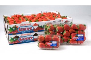 strawberries package